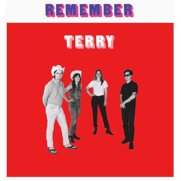 Remember terry cover