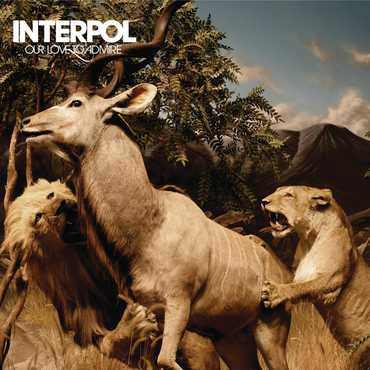 Interpo ourlove coverart